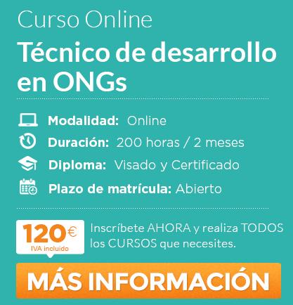 "Curso ""Técnico de desarrollo en ong"" online"