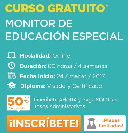Monitor de Educación Especial