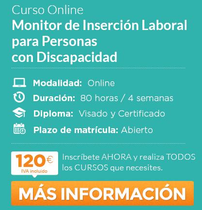 Monitor de Inserción Laboral para Personas con Discapacidad
